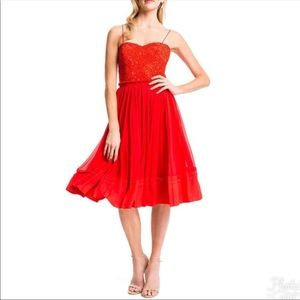 Cynthia Steffe Riley Lace-Bodice Party Dress